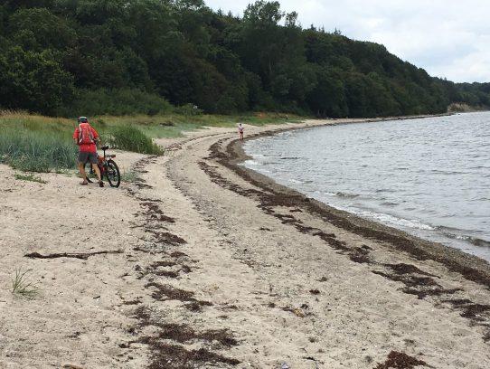 Mann schiebt Rad am Strand