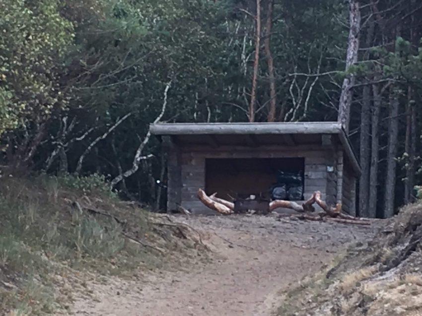 Shelter vor Wald